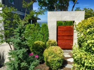 Armstrong Clark Semi Trans Sierra Redwood Door